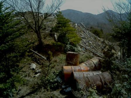 木材伐出地跡