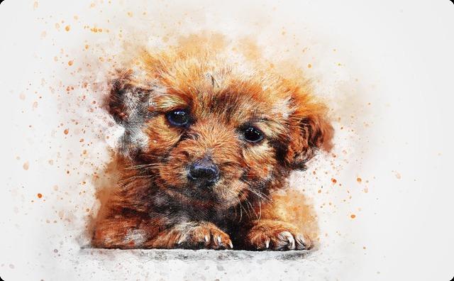 【GJ】俺「うちの犬は人懐こいよー」彼女「会うのが楽しみー」→ 家に招くと、なぜか彼女に警戒心むき出しの愛犬 → すると、その後なんと・・・