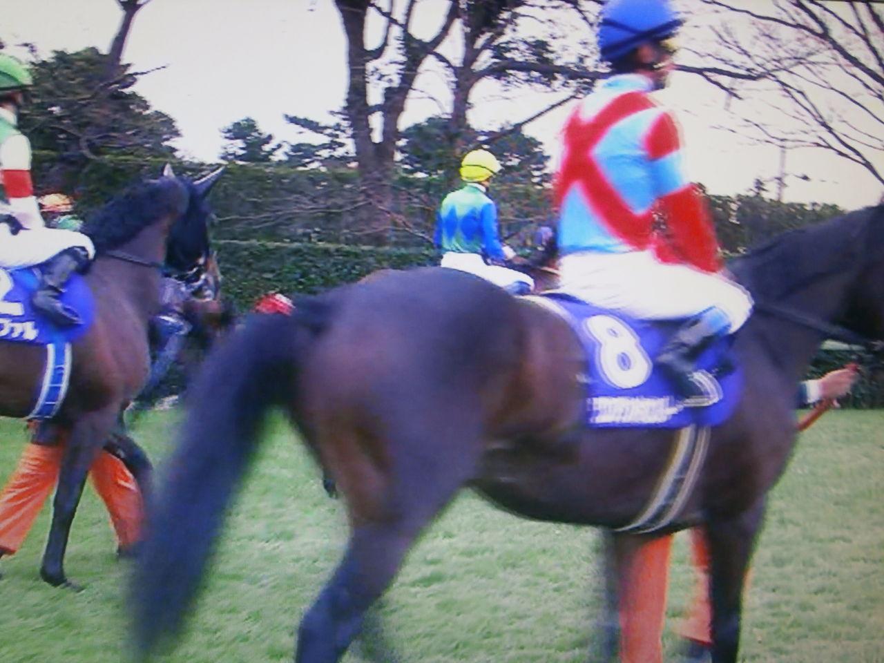 追求・投資生活(JRA・競艇編)  有馬記念はゴールドアクター完勝 吉田隼人はGⅠ初勝利おめでとう / ゴールドシップの引退はJRAの「一大エポック(褒めすぎではありません)」と言い切りますコメント