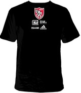 asian t-shirt2