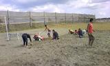 NVC草刈り