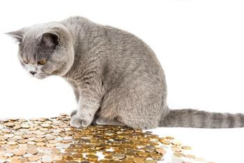 貧乏人と金持ちの差