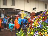 20090301菜の花