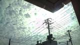 20101016うろこ雲