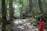 20100503東海自然歩道1