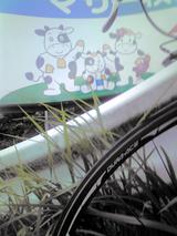 200808023鹿野山写真