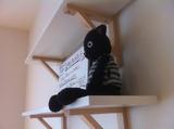 20111223黒猫3
