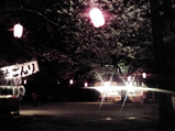 20100404夜桜