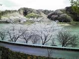 20100406佐久間ダム