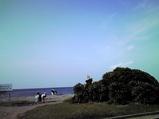 20090523富津岬
