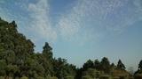 20100518うろこ雲