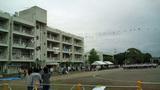 20100529運動会1