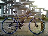 20080614富津岬2