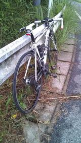 20100624鹿野山