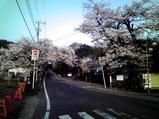 20090409通勤4福岡