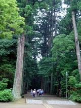 2008あじさいお寺1
