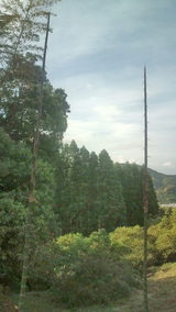 20100519竹