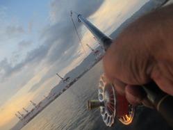 20170910神戸渡船-9