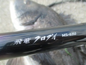 20170527尼崎(飛竜クロダイMS-63U)