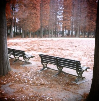 benchs.jpg