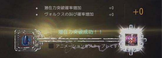 20190131-11