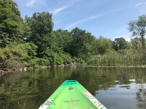 Kayak090720-3