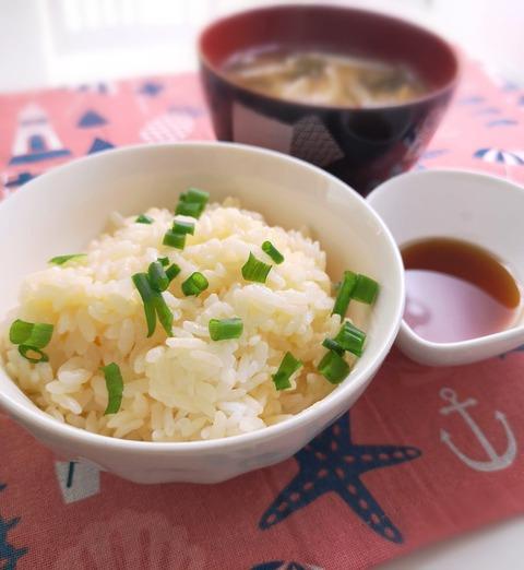 炊き玉ご飯 (1)