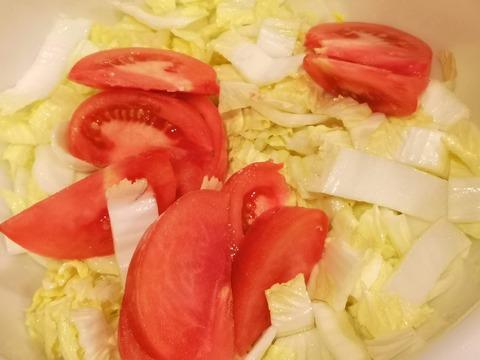 山盛り白菜とトマトのサラダ (4)