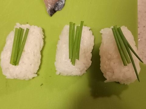 しめ鯖にぎり (10)