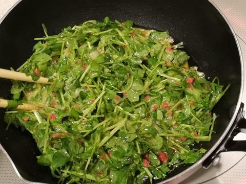 豆苗煮卵 (4)