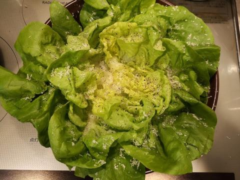 サラダ菜のフラワーサラダ (6)