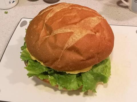 ブールサンドイッチ (15)