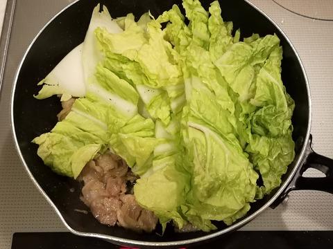 白菜のトロトロ煮 (5)