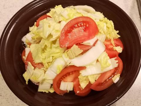 山盛り白菜とトマトのサラダ (5)