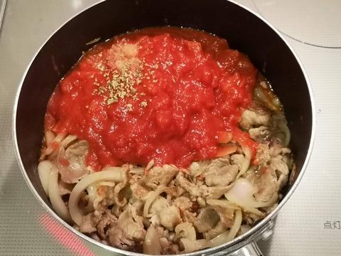 豚こま肉のトマト煮込み (6)