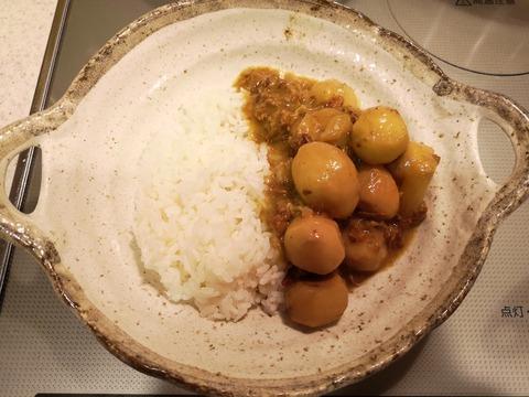 里芋と牛肉のカレー (12)