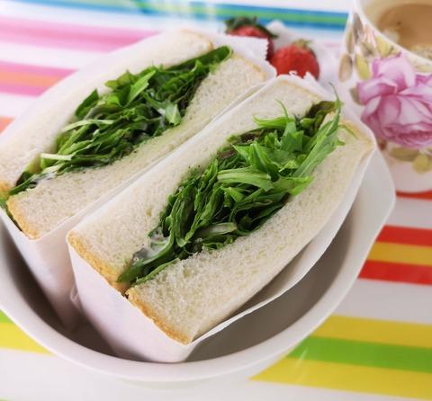 ベビーリーフサンドイッチ (1)