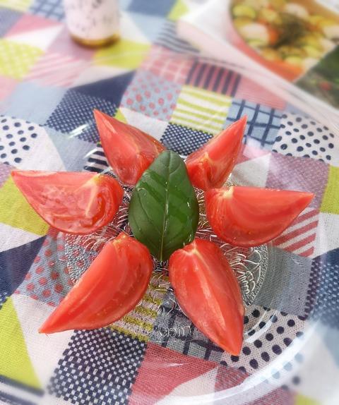 トマトの浅漬け (1)