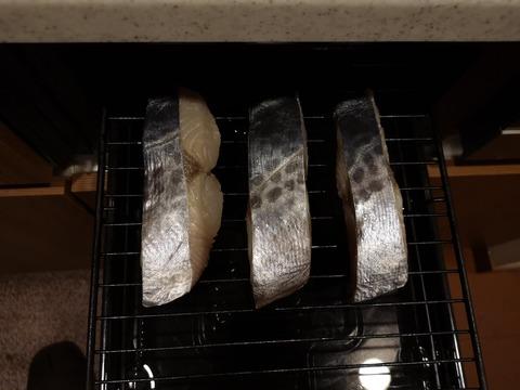 鰆の塩焼き (5)