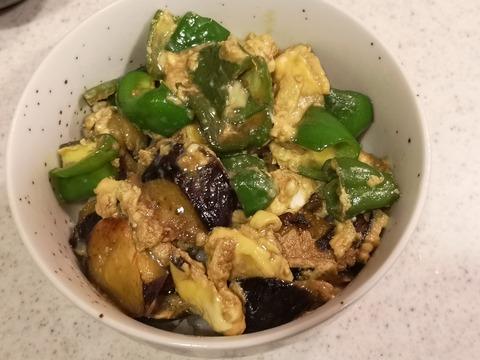 夏野菜の玉子丼 (10)