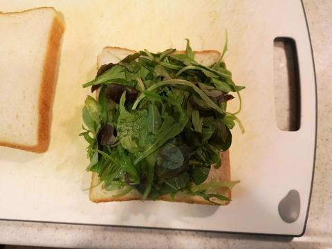 ベビーリーフサンドイッチ (3)