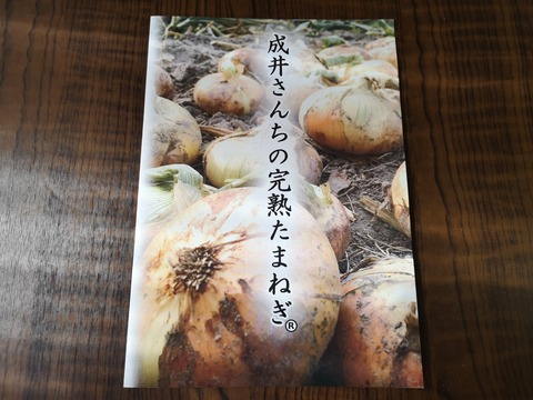 完熟たまねぎのステーキ (2)