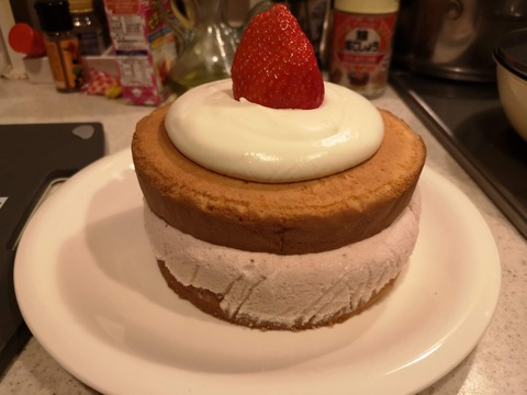 イチゴのムースケーキ (13)