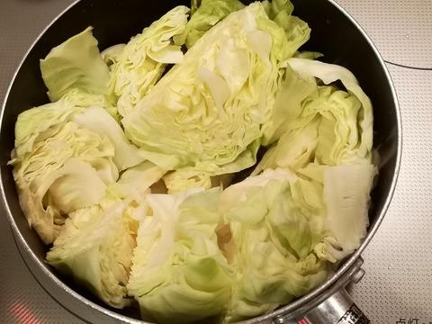 たっぷりキャベツと牛肉のトマト煮込み (4)