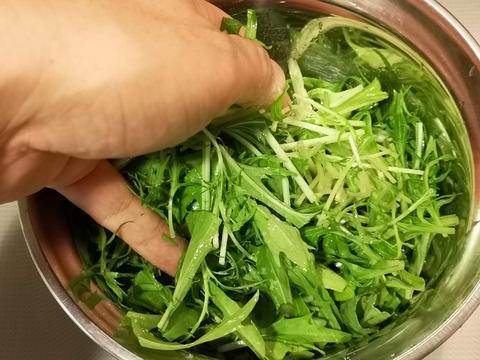 水菜のハリハリ漬け (4)