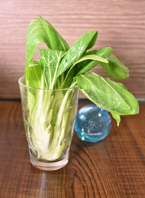 チンゲン菜のスティックサラダ (1)