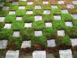 方丈庭園市松