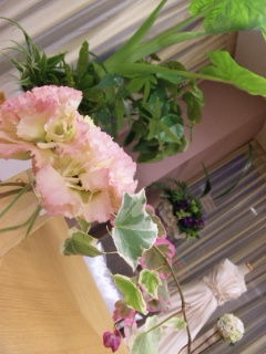 お花とみどり