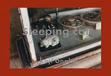 Sleepingcat_Cover