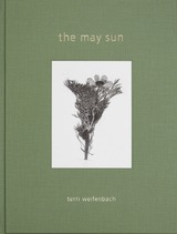 the may sun_top